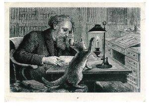 Dickens_cat