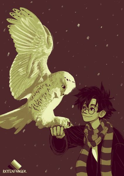 Harry Potter 005